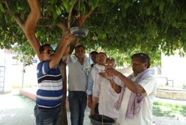 रामबहादुर राय की प्रेरणा से शिक्षण संस्थानों में पक्षियों के लिए जलपात्र का प्रबंध