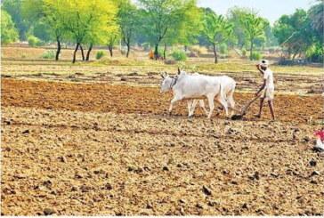 किसानों की समस्या तब सुलझेगी जब जेटली विशेष बजट का करें प्रावधान:योगेंद्र यादव