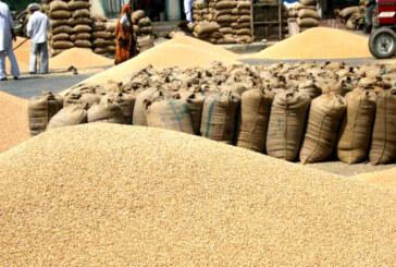 अब विदेशों से गेहूं आयात पर कोई शुल्क नहीं