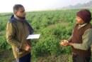 किसानों की मांग..समर्थन मूल्य नहीं कृषि उत्पादों का बाजार मूल्य तय करे सरकार