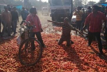 सड़क पर कुचला जा रहा टमाटर..संसद में किसान खुशहाली के गीत गाते जेटली