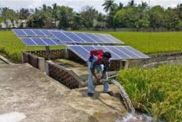 कृषि क्षेत्र…हुनरमंद नौजवानों के लिए रोजगार के मौके बढ़े: राधामोहन सिंह
