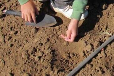 उपलब्ध्यिों के तीन साल..पूर्वांचल में दम तोड़ रही मिट्टी जांच योजना