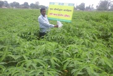 आधुनिक किसान गढ़ रही है इफको कोर्डेट