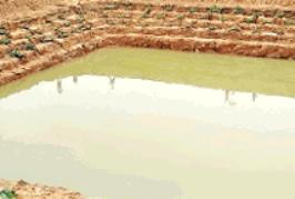 गांव की तस्वीर बदलने को काफी है एक समृद्ध तालाब