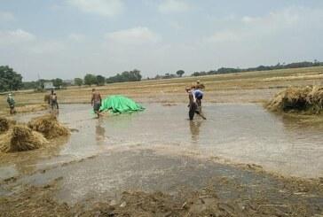 बिहार व उत्तर प्रदेश के कई जिलों में आफत वाली बारिश से अन्नदाता को भारी नुकसान
